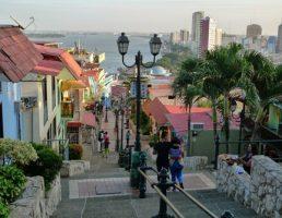 Equateur-Guayaquil-Galapagos (2)